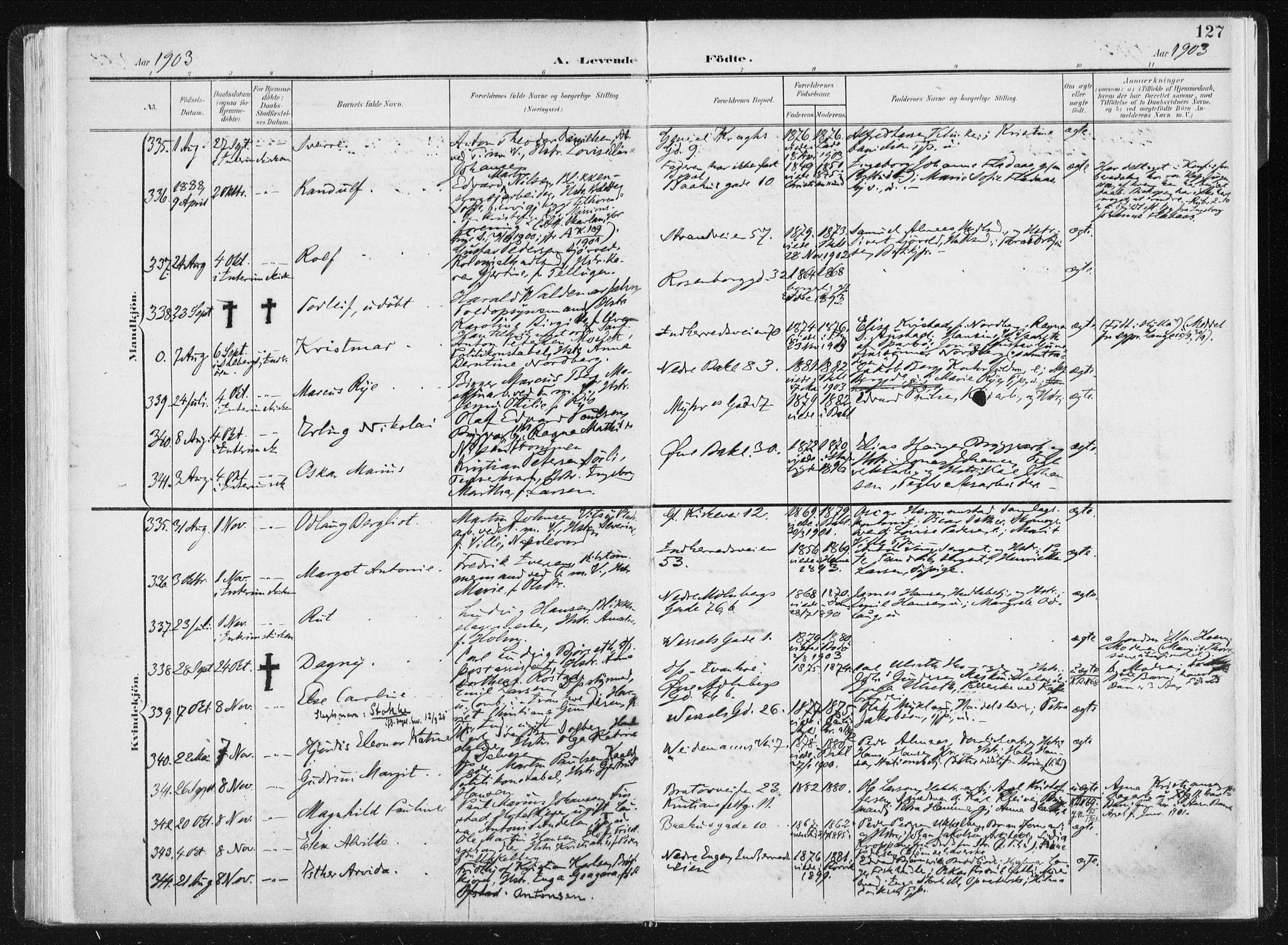 Fødte og døpte 1903, side 127.